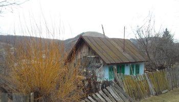 case-abandonate