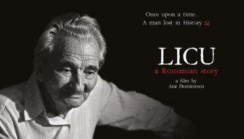 licu-page