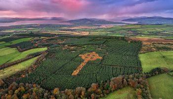 Cruce-celtica