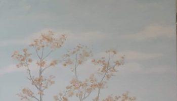 pictura238423