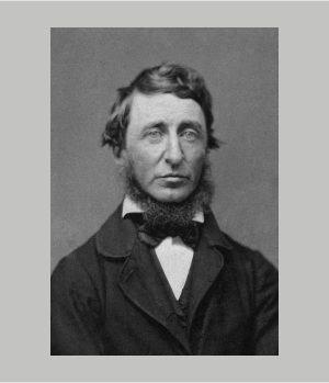D.Thoreau