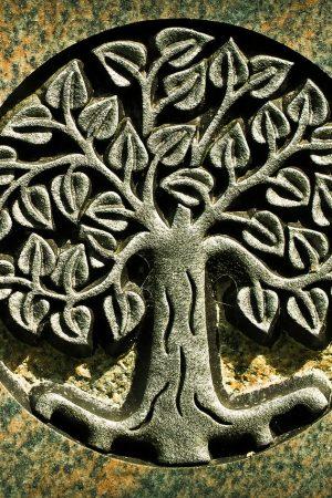 tree462